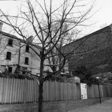 rear-of 42-52-harrington-street-and-evans-stores